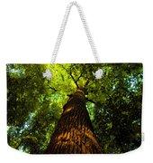 Redwoods Weekender Tote Bag