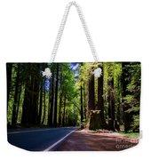 Redwoods Road Weekender Tote Bag