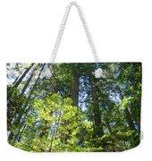 Redwoods Trees Forest Art Prints Baslee Troutman Weekender Tote Bag