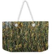 Reeds II Weekender Tote Bag