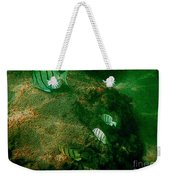 Reef Life Off Hawaii Weekender Tote Bag