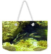 Reef Tide Pool Weekender Tote Bag