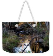 Reflect Upon Autumn Weekender Tote Bag