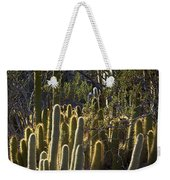 Reflecting The Sunshine Weekender Tote Bag