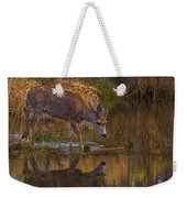 Reflection In The Stream Weekender Tote Bag