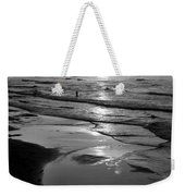 Reflection Of Bird In Flight Weekender Tote Bag