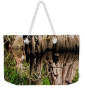 Reflection Of Cypress Knees Weekender Tote Bag