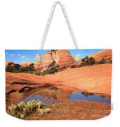 Reflections After The Storm Weekender Tote Bag