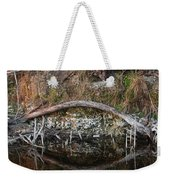 Reflections Iguana Weekender Tote Bag