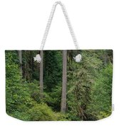 Reflections In Silver Falls State Park Weekender Tote Bag