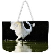 Reflections Of An Angel  Weekender Tote Bag