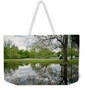 Reflective Field In Spring Weekender Tote Bag