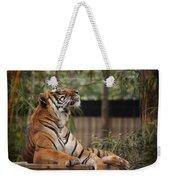 Regal Tiger Weekender Tote Bag