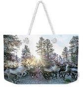 Reindeer On Autumn Sun Weekender Tote Bag