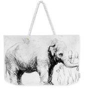 Rembrandt: Elephant, 1637 Weekender Tote Bag