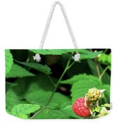 Remembering One Sweet Rasberry Weekender Tote Bag