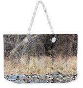 Resting Canadian Geese Weekender Tote Bag