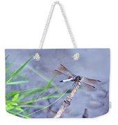 Resting Dragonfly Weekender Tote Bag