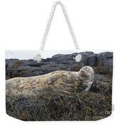 Resting Gray Seal On Seaweed Weekender Tote Bag