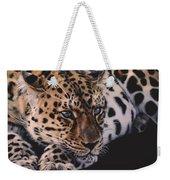 Resting Leopard  Weekender Tote Bag