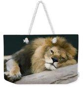 Resting Lion Weekender Tote Bag