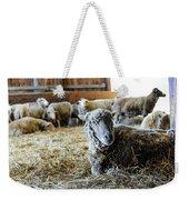 Resting Sheep Weekender Tote Bag