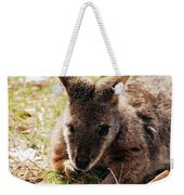 Resting Wallaby Weekender Tote Bag
