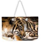 Resting Yet Watchful Tiger Weekender Tote Bag