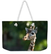 Reticulated Giraffe At The Omaha Zoo Weekender Tote Bag