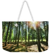 Retzer Nature Center Pine Trees Weekender Tote Bag