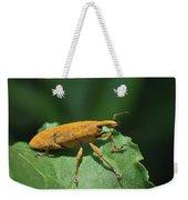 Rhubarb Weevil Weekender Tote Bag