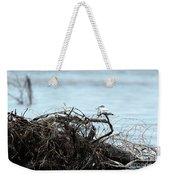 Ring Billed Gull Weekender Tote Bag