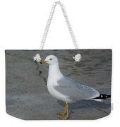 Ring-billed Gull Weekender Tote Bag