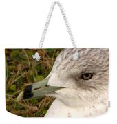 Ring Billed Gull Profile Weekender Tote Bag