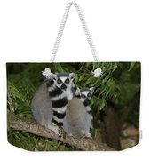 Ring-tailed Lemurs Weekender Tote Bag