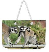 Ring Tailed Lemurs With Baby Weekender Tote Bag