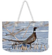 Ringneck Pheasant Rooster In Snow Weekender Tote Bag