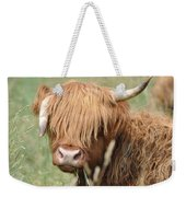 Ringo - Highland Cow Weekender Tote Bag