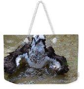 River Hawk Splashing Around In The Water Weekender Tote Bag
