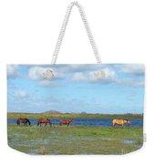 River Horses Horizon Weekender Tote Bag