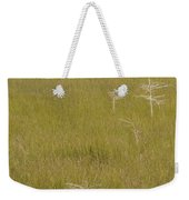 River Of Grass 1a Weekender Tote Bag