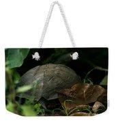 River Turtle 2 Weekender Tote Bag