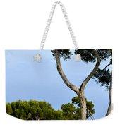 Riviera Trees Weekender Tote Bag