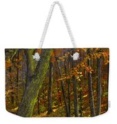 Road In The Woods Weekender Tote Bag