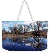Roadside Pond I Weekender Tote Bag