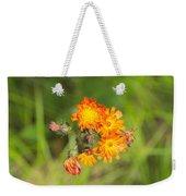 Roadside Wildflower Weekender Tote Bag