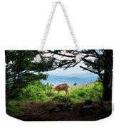 Roan Deer Weekender Tote Bag