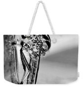 Robber Fly - Black And White Weekender Tote Bag