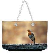 Robin 2 Weekender Tote Bag