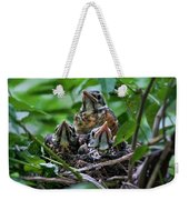 Robin Chicks In Nest. Weekender Tote Bag